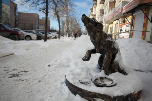 Памятник-копилка бездомной собаке