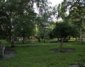 Парк им. Энгельса