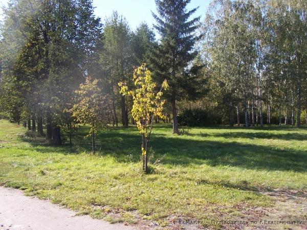 Парк Чкалова