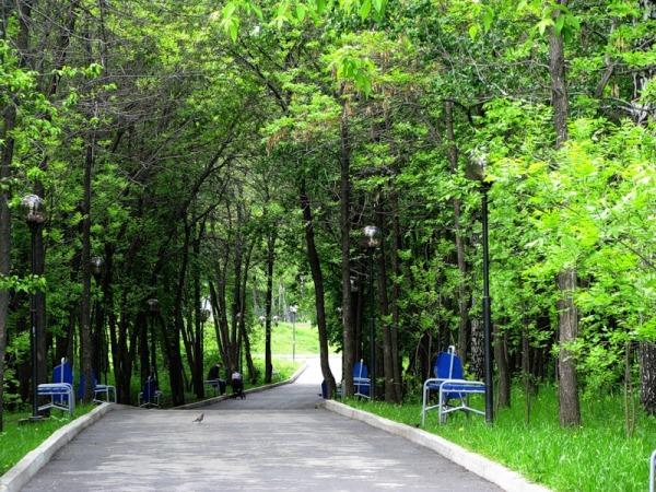 Основинский парк