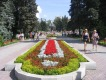 Дендрологический парк - выставка (8 Марта)
