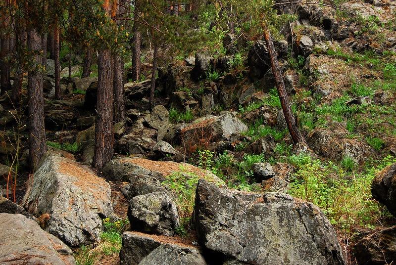 Уктус. Горы, леса, скалы... и древние языческие капища, мистика и скачки приборов!..